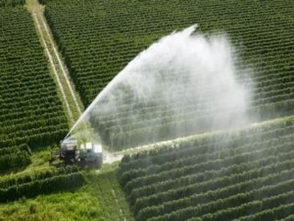 Jain Irrigation  Brokerage: CLSA  Rating: Buy  Target: Rs 150  Rationale: CLSA has a buy on Jain Irrigation with a target of Rs 150. They are encouraged by the Rs 220 crore sequential fall in debt. They like the management's strategy of prioritizing collections over growth and have upgraded earnings by 6-8% on lower tax rates.