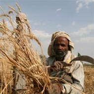 Telangana govt endorses farm loan waiver plan