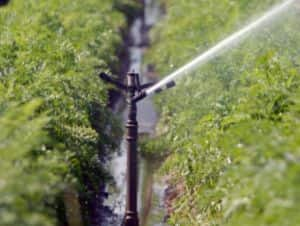 Other states too must help to meet Delhi's water needs