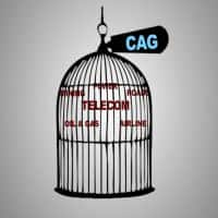 India Inc. 'CAG'ed! Telecom & Who Else?