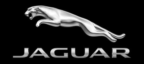 Discover the Method To Our Madness: Jaguar