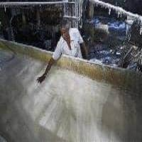 CCEA may review production subsidy to sugar mills tmrw