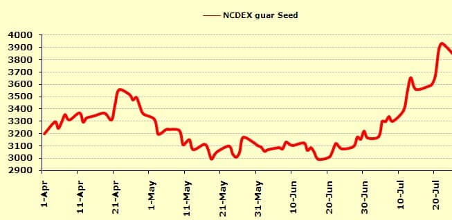 Guar outlook remains positive