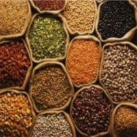 No change in foodgrain prices in the market