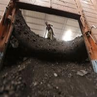 Largest US coal miner Peabody files for bankruptcy