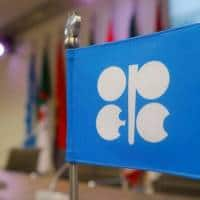 Russia state fund chief sees alliance with OPEC lasting years