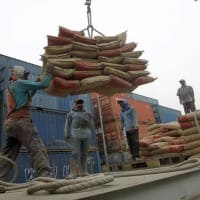Ambuja Cement Q4 PAT seen up 14.3% to Rs 212.2 cr: Motilal Oswal