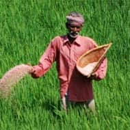 Railway Budget 2013: Freight hike to affect Govt's fertiliser subsidy bill