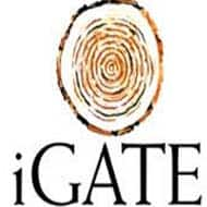 iGATE inks credit pact for $360 mn loan facility