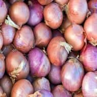 Government lifts ban on export of onions