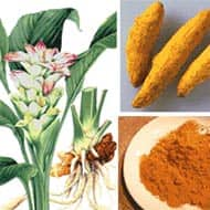 Turmeric to trade in 8182-8430. range: Achiievers Equities