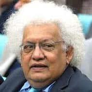 RBI shouldn't hasten rate cut trajectory: Meghnad Desai